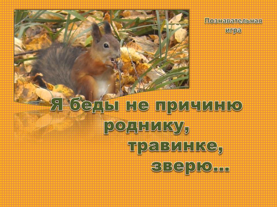 Ю.Аракчеев «Сидел в траве кузнечик»